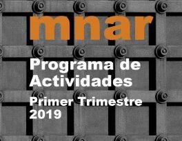 Actividades MNAR en el Primer Trimestre